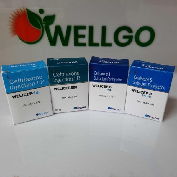 Ceftriaxone dry injection range pharma franchise